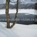 雪景色(pho-2013wi-0031)