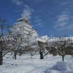 雪景色(pho-2013wi-0032)