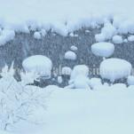 冬の白川郷(pho-2013wi-0094)