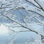 冬の白川郷(pho-2013wi-0107)
