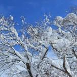 冬の白川郷(pho-2013wi-0108)