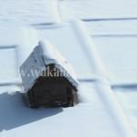 冬の白川郷(pho-2013wi-0114)