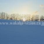冬の北海道(pho-2013wi-0142)
