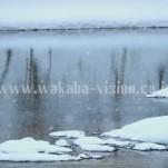 冬の北海道(pho-2013wi-0178)