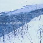 冬の北海道(pho-2013wi-0194)