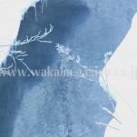 冬の北海道(pho-2013wi-0197)