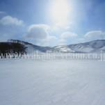 冬の北海道(pho-2013wi-0200)