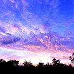 sky (81)
