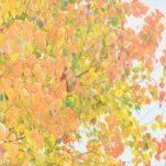 autumn (1736)