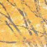 autumn (1401)