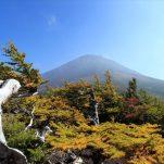 富士山 (882)